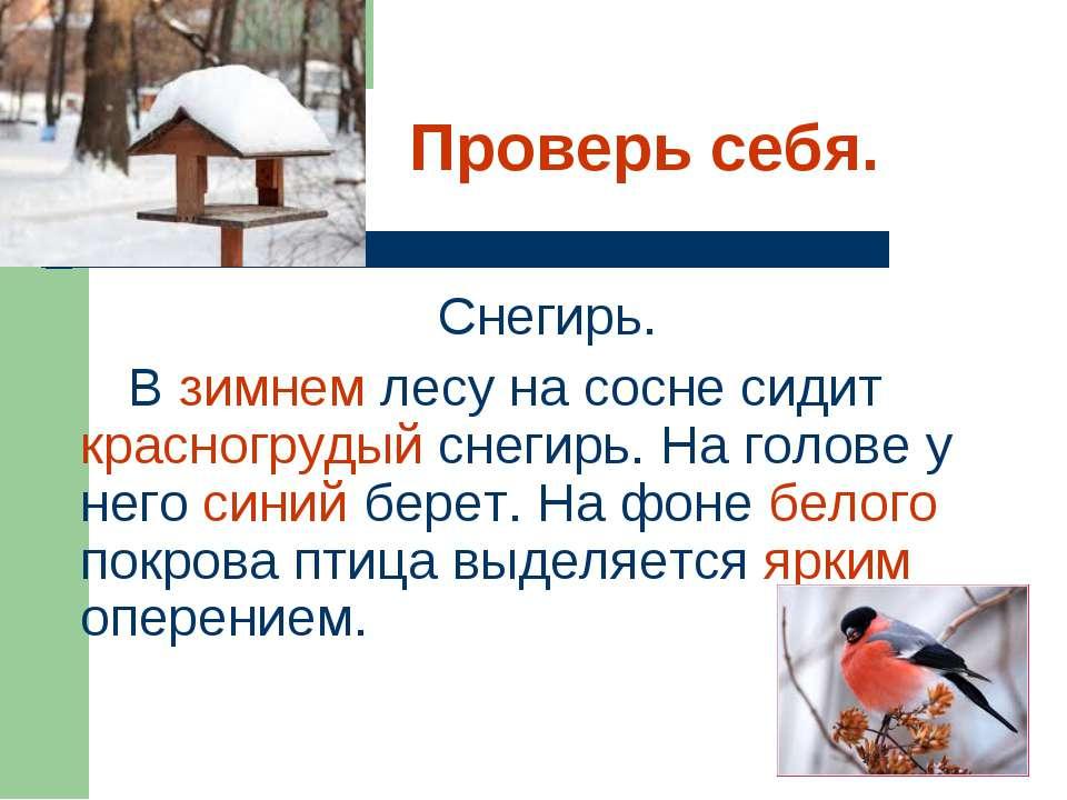 Проверь себя. Снегирь. В зимнем лесу на сосне сидит красногрудый снегирь. На ...