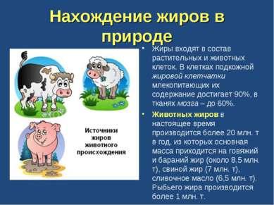 Нахождение жиров в природе Жиры входят в состав растительных и животных клето...
