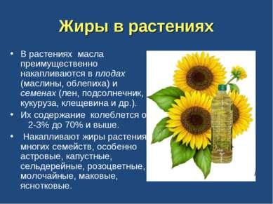 Жиры в растениях В растениях масла преимущественно накапливаются в плодах (ма...