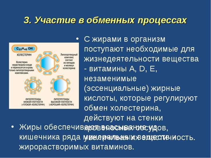 3. Участие в обменных процессах С жирами в организм поступают необходимые для...