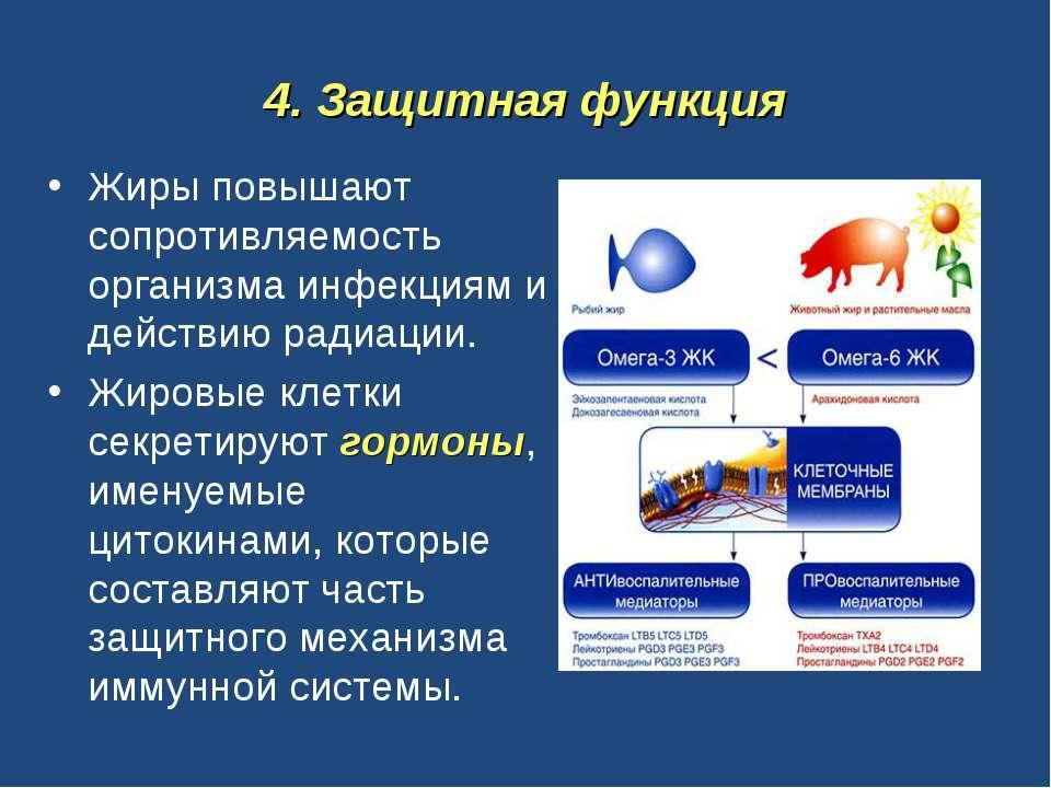 4. Защитная функция Жиры повышают сопротивляемость организма инфекциям и дейс...