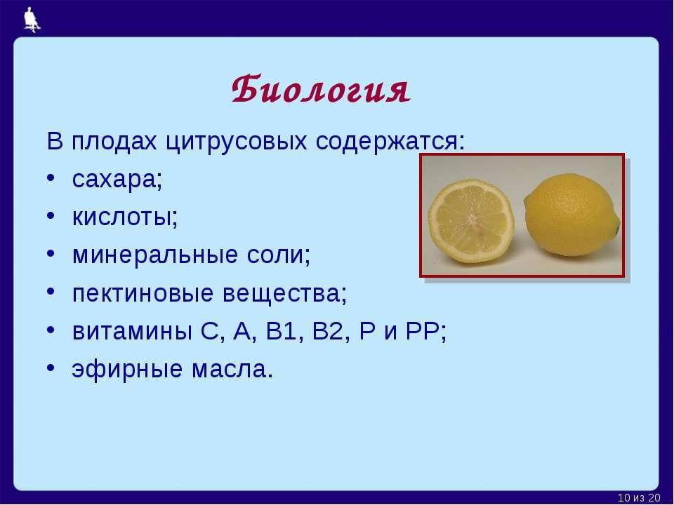 В плодах цитрусовых содержатся: сахара; кислоты; минеральные соли; пектиновые...