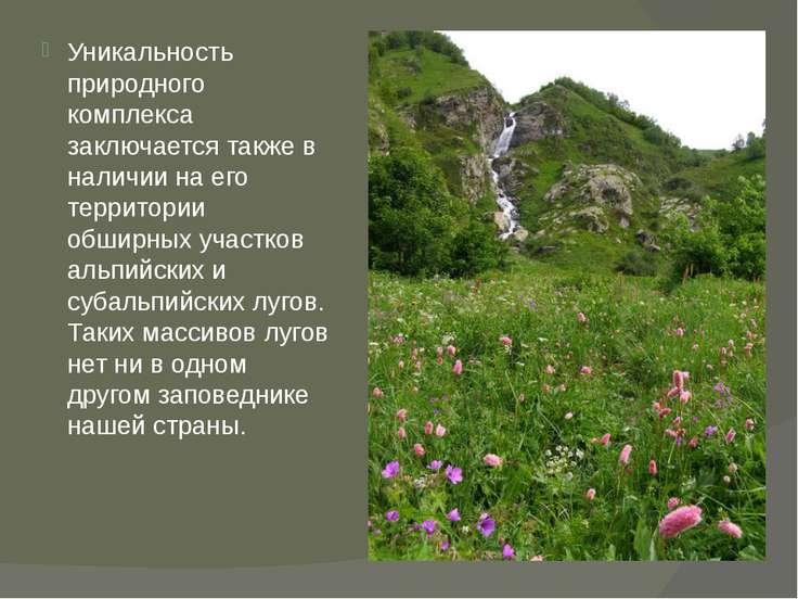 Уникальность природного комплекса заключается также в наличии на его территор...