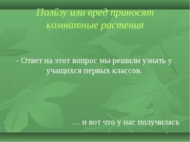 Пользу или вред приносят комнатные растения - Ответ на этот вопрос мы решили ...