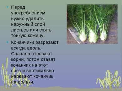 Перед употреблением нужно удалить наружный слой листьев или снять тонкую кожи...