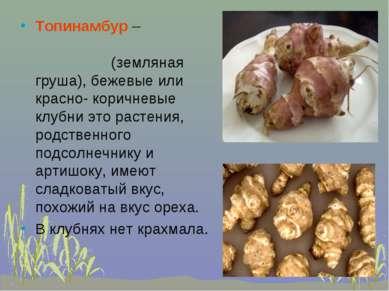 Топинамбур – (земляная груша), бежевые или красно- коричневые клубни это раст...