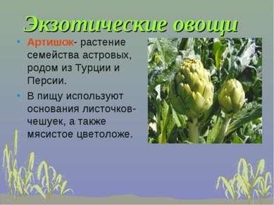Экзотические овощи Артишок- растение семейства астровых, родом из Турции и Пе...