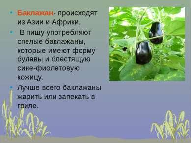 Баклажан- происходят из Азии и Африки. В пищу употребляют спелые баклажаны, к...