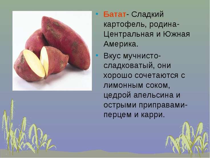 Батат- Сладкий картофель, родина- Центральная и Южная Америка. Вкус мучнисто-...