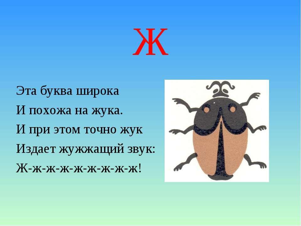Ж Эта буква широка И похожа на жука. И при этом точно жук Издает жужжащий зву...