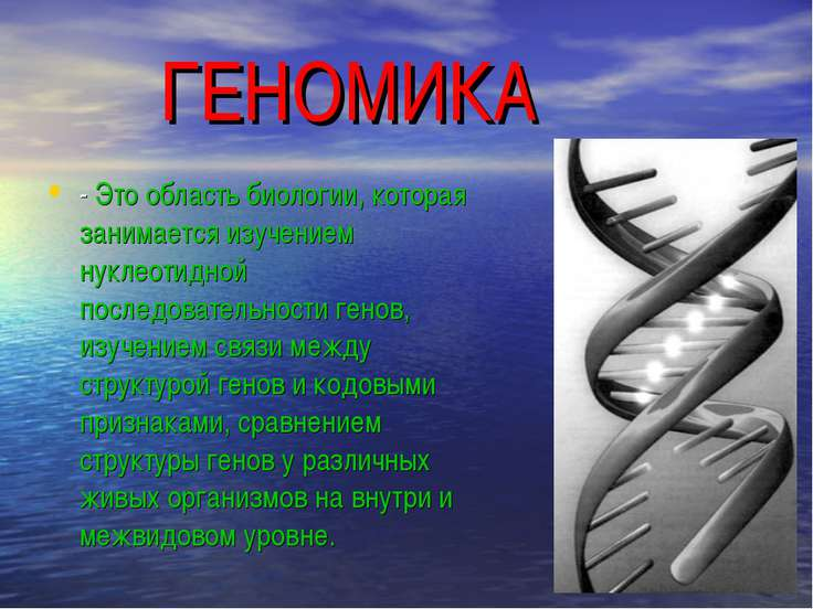 ГЕНОМИКА - Это область биологии, которая занимается изучением нуклеотидной по...