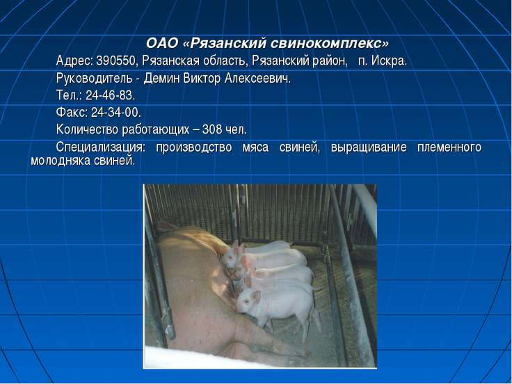 ОАО «Рязанский свинокомплекс» Адрес: 390550, Рязанская область, Рязанский рай...