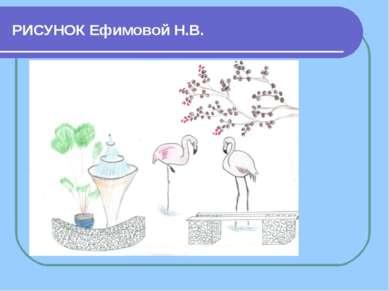 РИСУНОК Ефимовой Н.В.