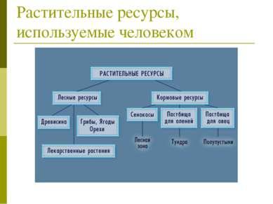 Растительные ресурсы, используемые человеком