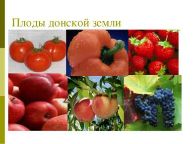 Плоды донской земли