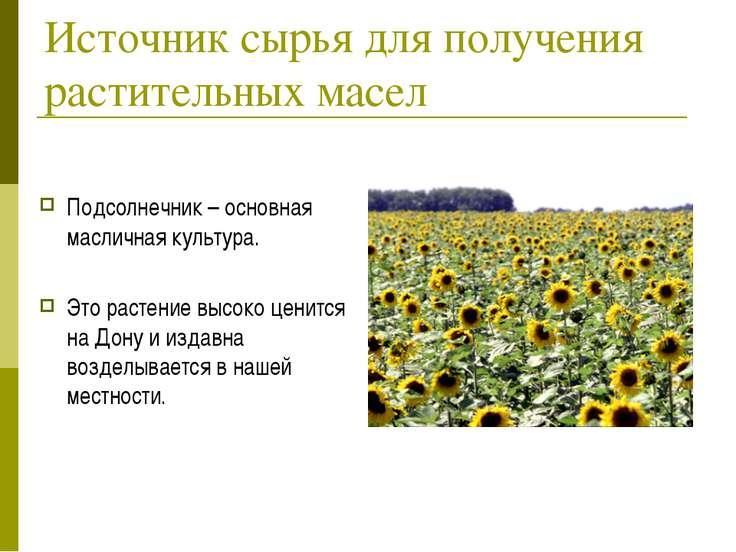 Источник сырья для получения растительных масел Подсолнечник – основная масли...