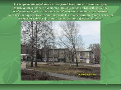 На территории коробковских владений было много лесных угодий, нераспаханных п...