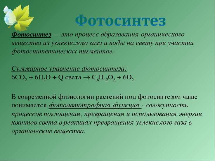 важное фотосинтез углекислого газа уравнение усиления лечебного