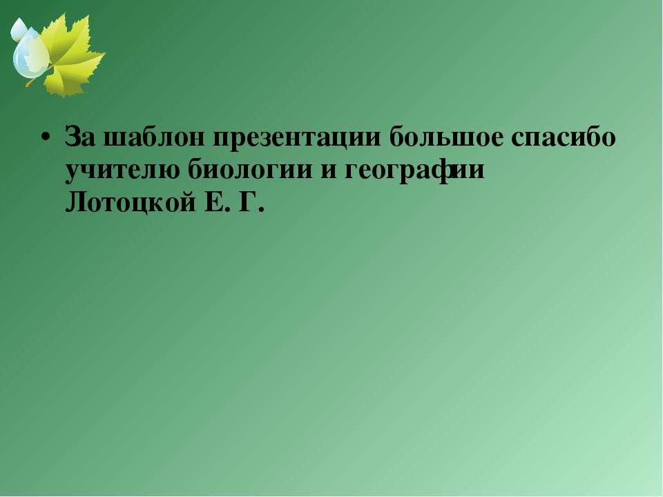 За шаблон презентации большое спасибо учителю биологии и географии Лотоцкой Е...