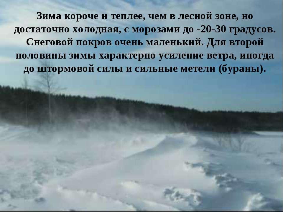 Зима короче и теплее, чем в лесной зоне, но достаточно холодная, с морозами д...