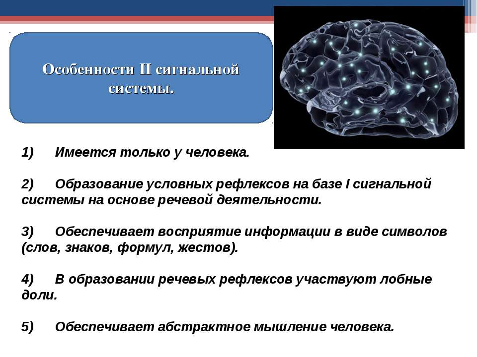 Особенности II сигнальной системы. 1) Имеется только у человека. 2) Образован...