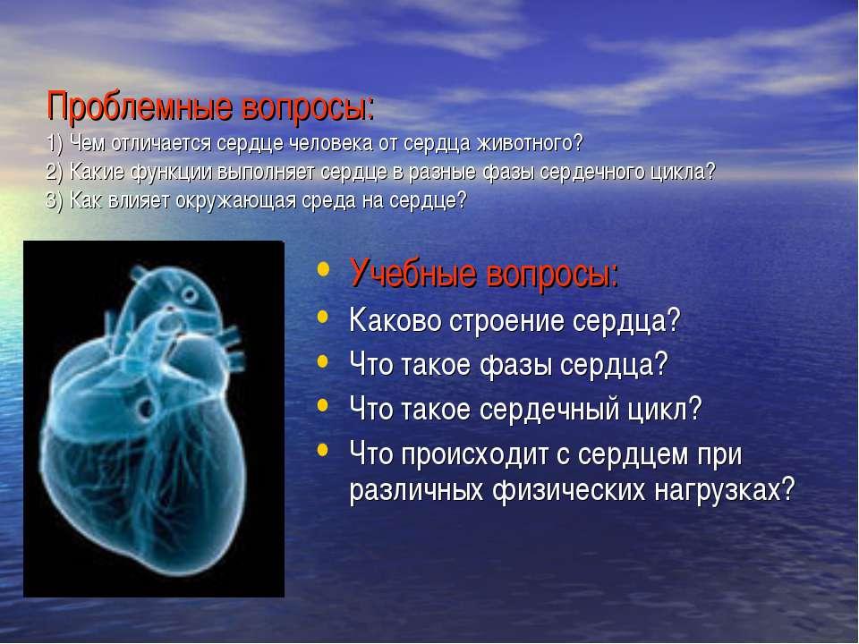 Проблемные вопросы: 1) Чем отличается сердце человека от сердца животного? 2)...