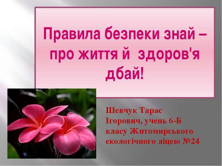 Правила безпеки знай – про життя й здоров'я дбай! Шевчук Тарас Ігорович, учен...