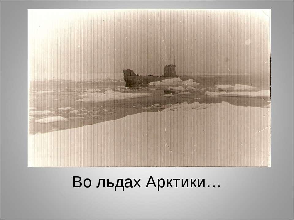 Во льдах Арктики…