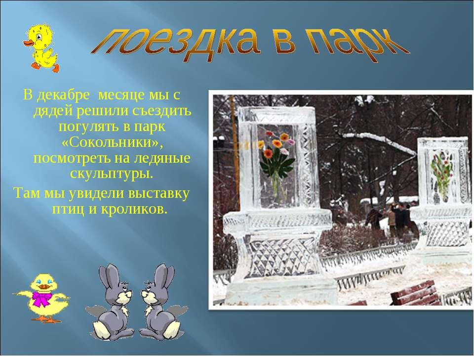 В декабре месяце мы с дядей решили съездить погулять в парк «Сокольники», пос...