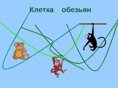 Клетка обезьян