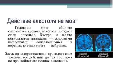 Действие алкоголя на мозг Головной мозг обильно снабжается кровью, алкоголь п...