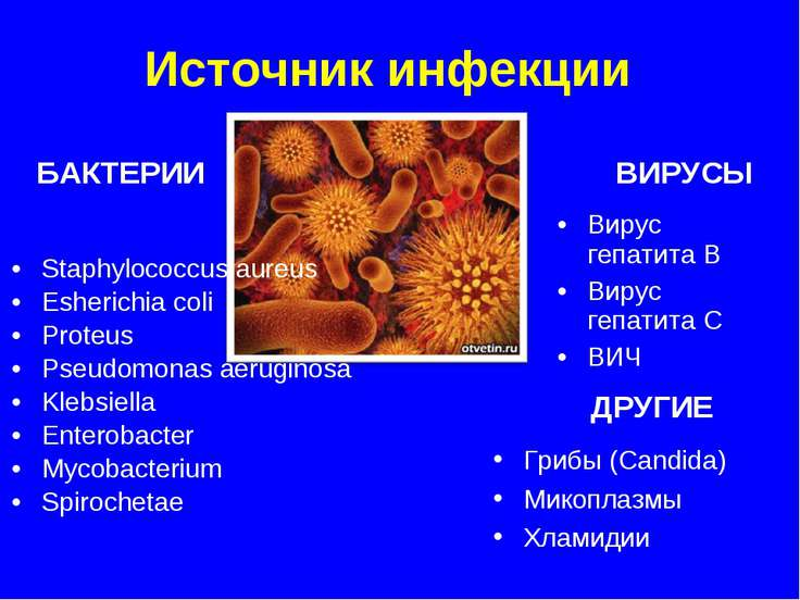 Staphylococcus aureus Esherichia coli Proteus Pseudomonas aeruginosa Klebsiel...
