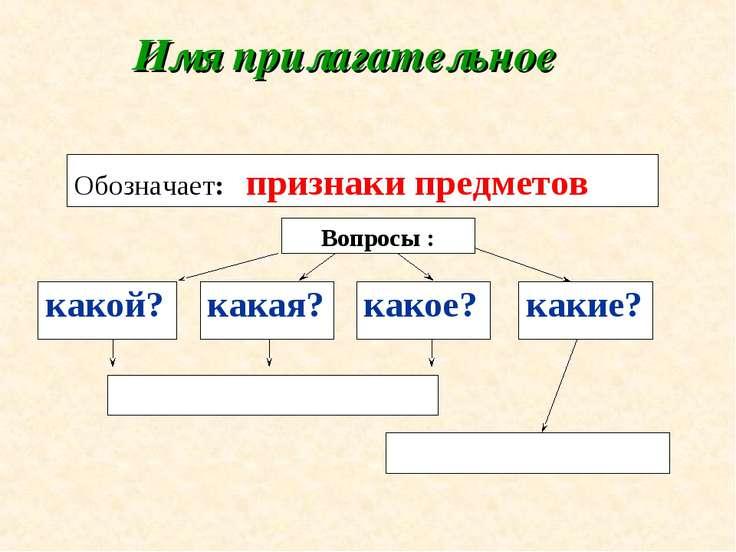 Имя прилагательное Вопросы : Обозначает: признаки предметов какой? какая? как...