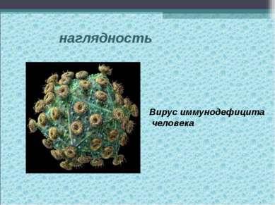 наглядность Вирус иммунодефицита человека