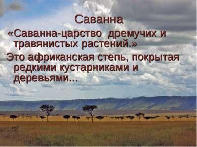 Саванна «Саванна-царство дремучих и травянистых растений.» Это африканская ст...