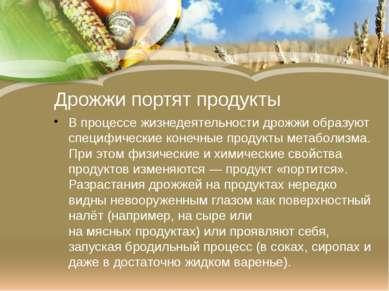 Дрожжи портят продукты В процессе жизнедеятельности дрожжи образуют специфиче...