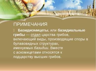 ПРИМЕЧАНИЯ Базидиомицеты,илибазидиальные грибы—отделцарствагрибов, вклю...