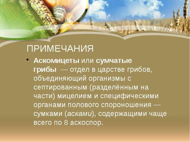 ПРИМЕЧАНИЯ Аскомицетыилисумчатые грибы—отделвцарствегрибов, объединяю...