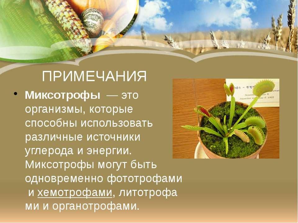 ПРИМЕЧАНИЯ Миксотрофы— это организмы, которые способны использовать различн...