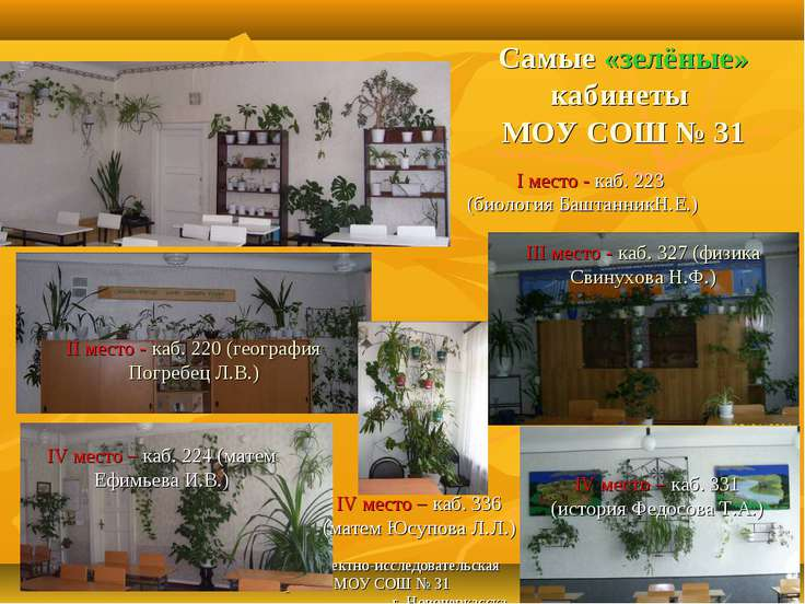 Проектно-исследовательская работа МОУ СОШ № 31 г. Новочеркасска * Самые «зелё...