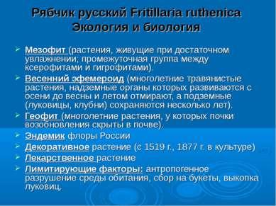 Рябчик русский Fritillaria ruthenica Экология и биология Мезофит (растения, ж...