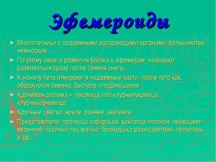 Эфемероиды Многолетники с подземными запасающими органами, большинство невысо...