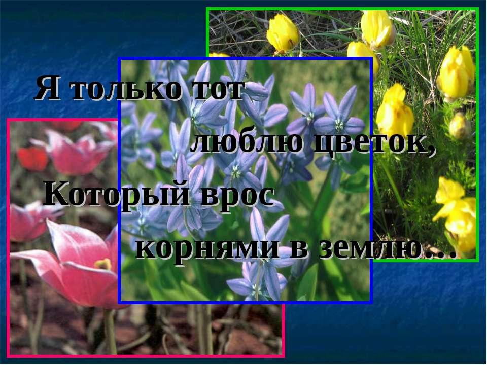 Я только тот люблю цветок, Который врос корнями в землю…