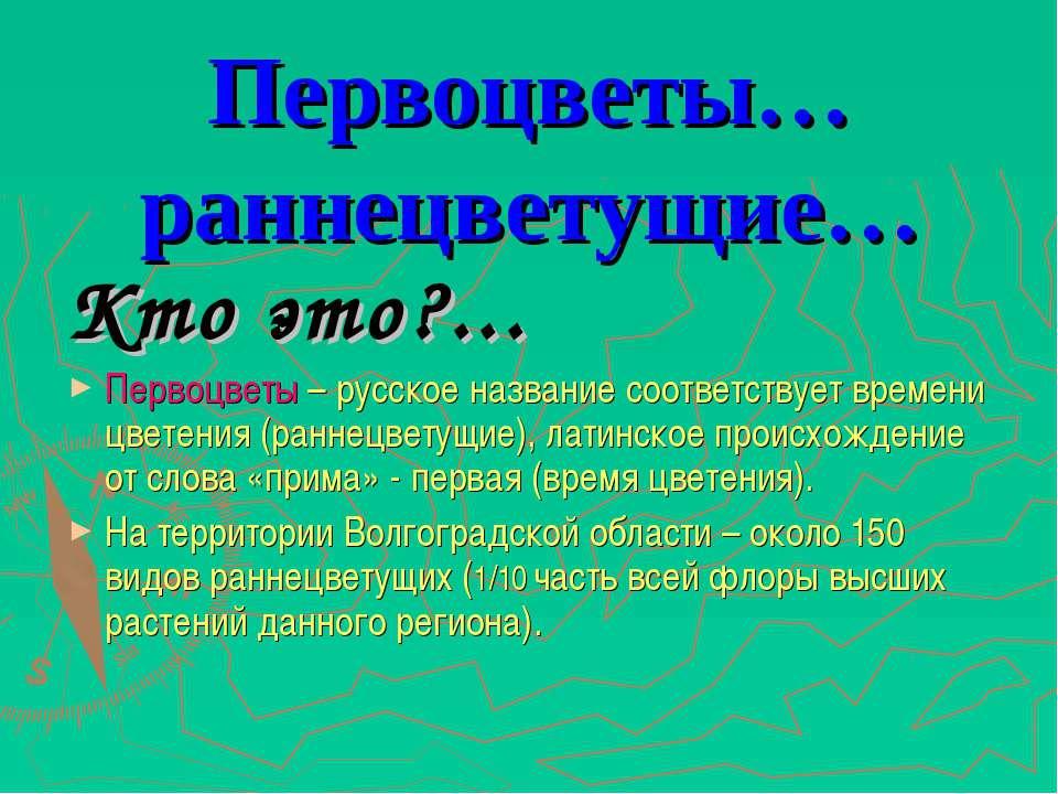 Первоцветы… раннецветущие… Кто это?... Первоцветы – русское название соответс...