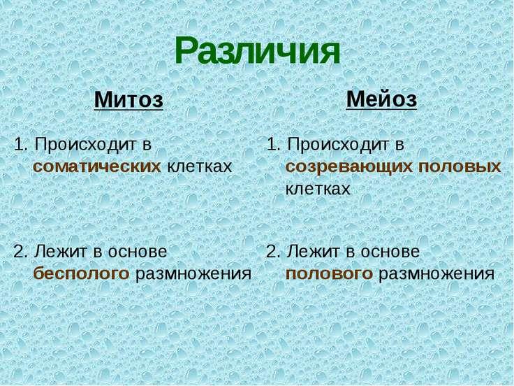 Различия Митоз Мейоз 1. Происходит в соматических клетках 1. Происходит в соз...