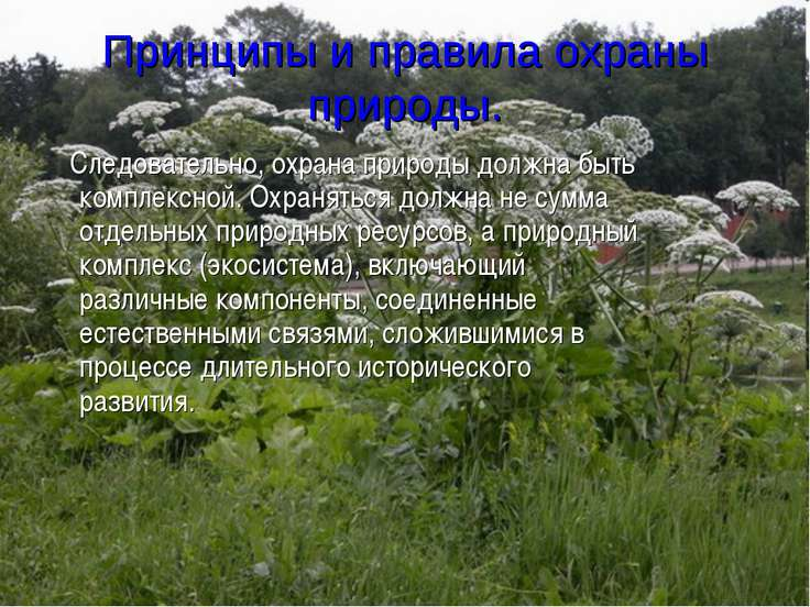 Принципы и правила охраны природы. Следовательно, охрана природы должна быть ...