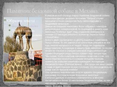 Памятник бездомной собаке в Мехико. В мексиканской столице открыт памятник бе...