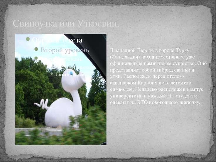 Свиноутка или Уткосвин. В западной Европе в городе Турку (Финляндия) находитс...