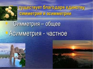 Мир существует благодаря единству симметрии и асимметрии Симметрия – общее Ас...