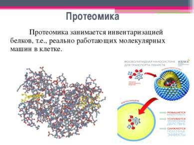 Протеомика Протеомика занимается инвентаризацией белков, т.е., реально работа...